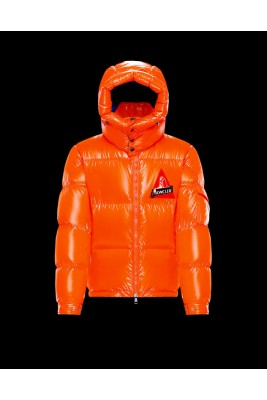 2019-2020 MONCLER WILSON Men Down Jackets (m2020-029)
